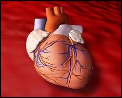 Прединфарктное состояние, лечение прединфарктного состояния, прединфарктное состояние лечение, лекарства от прединфарктного состояния, средства от прединфарктного состояния, прединфарктное состояние лечение лазером, прединфарктное состояние лечение травами, прединфарктное состояние лечение иглами, прединфарктное состояние лечение пчелами, прединфарктный период, угроза инфаркта, лечение прединфаркта, состояние прединфаркта, прелюдие инфаркта, предшествие инфаркта, прединфарктный период лечение. Киев