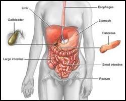 Диарея, понос, лечение диареи, диарея лечение, понос лечение, лечение поноса, лекарства от поноса, средства от поноса, лекарства от диареи, средства от диареи, диарея лечение травами, диарея лечение иглами, диарея лечение лазером, диарея лечение физиотерапией, понос лечение травами, понос лечение народное, понос лечение лазером, понос лечение иглами, диарея вирусная, диарея кохинхинская, диарея эпидемическая, частый стул, частый жидкий стул, острая диарея, хроническая диарея, инфекционная диарея. Киев